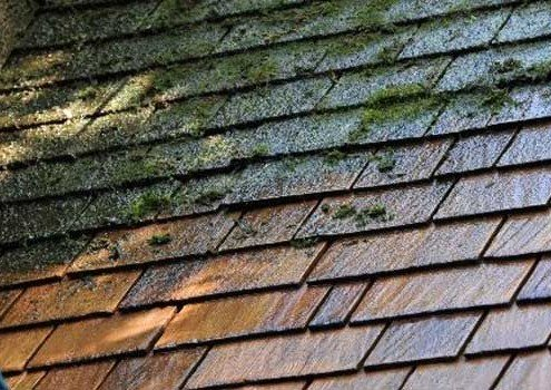 Roof Cleaning No. Illinois