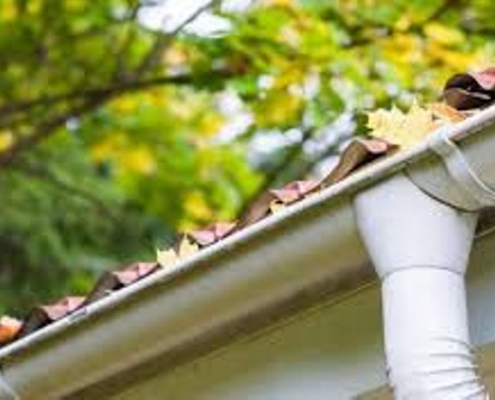 Gutter Cleaning service Rockford