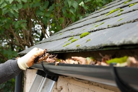 Get A Professional Gutter Cleaning Service Today Rpw