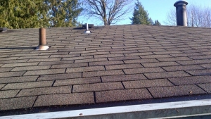 Roof Stain Removal Rockford